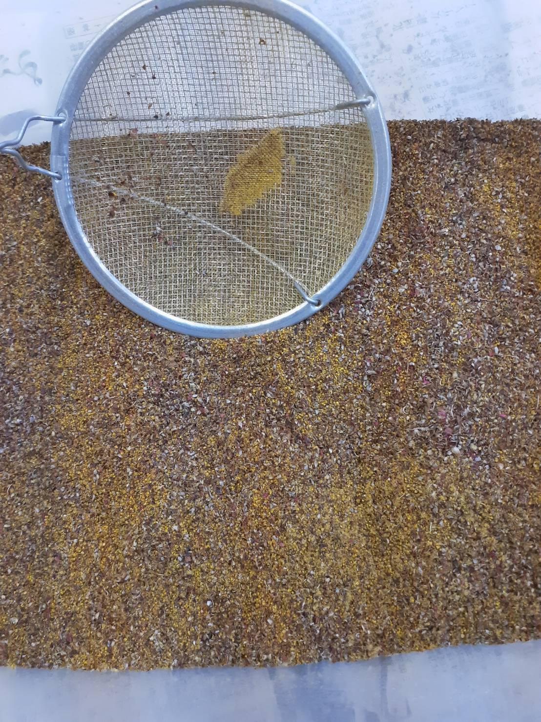 乾燥させた花粉